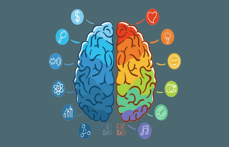 brainwebsite38